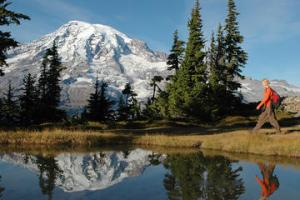 mt-rainier-small-group-walking-or-snowshoeing-tour-with-lunch-in-seattle-112084[1]